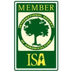 international society of aboriculture | G&V Tree Service