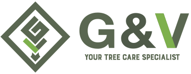 G&V TREE AND LANDSCAPING SERVICES